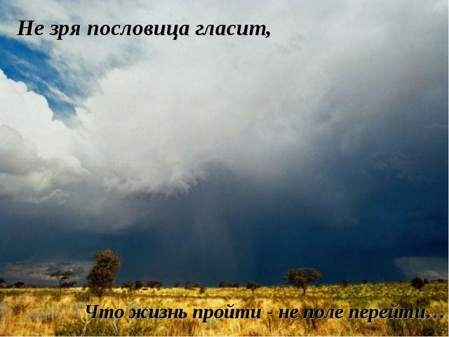 Не зря пословица гласит, Что жизнь пройти - не поле перейти…