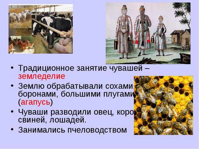 Традиционное занятие чувашей – земледелие Землю обрабатывали сохами, боронами...