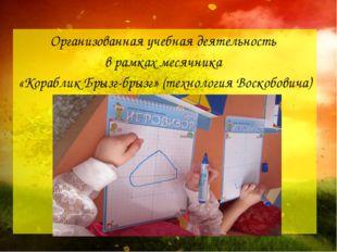 Организованная учебная деятельность в рамках месячника «Кораблик Брызг-брызг»