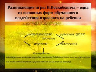 Развивающие игры В.Воскобовича – одна из основных форм обучающего воздействия