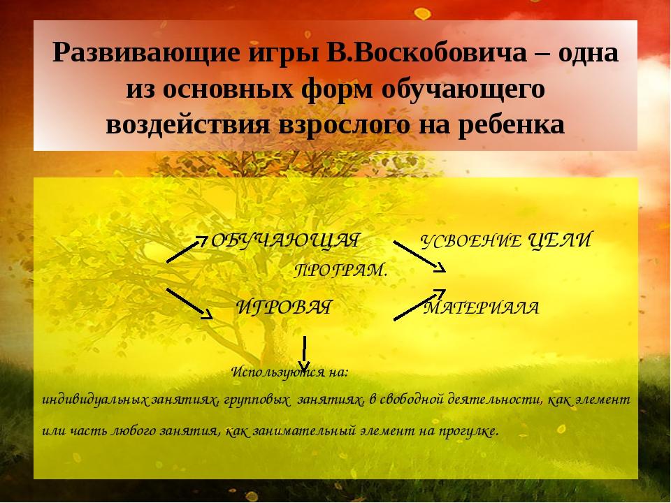 Развивающие игры В.Воскобовича – одна из основных форм обучающего воздействия...