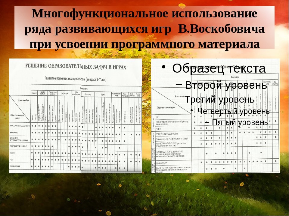 Многофункциональное использование ряда развивающихся игр В.Воскобовича при ус...