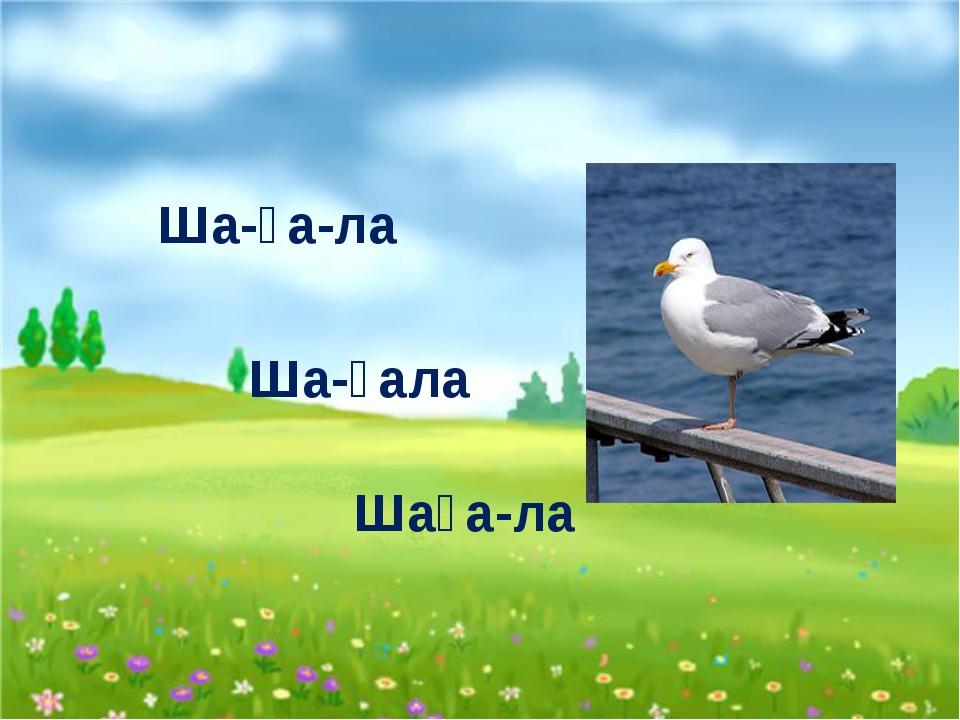 Ша-ға-ла Ша-ғала Шаға-ла