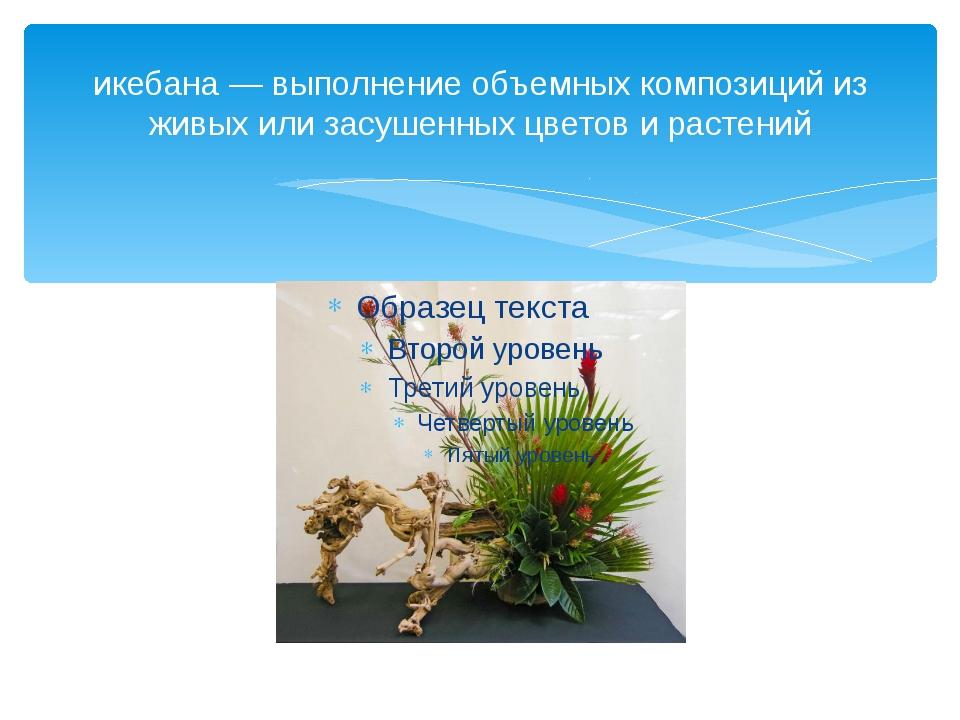 икебана — выполнение объемных композиций из живых или засушенных цветов и рас...