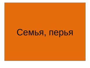 © InfoUrok.ru Семья, перья