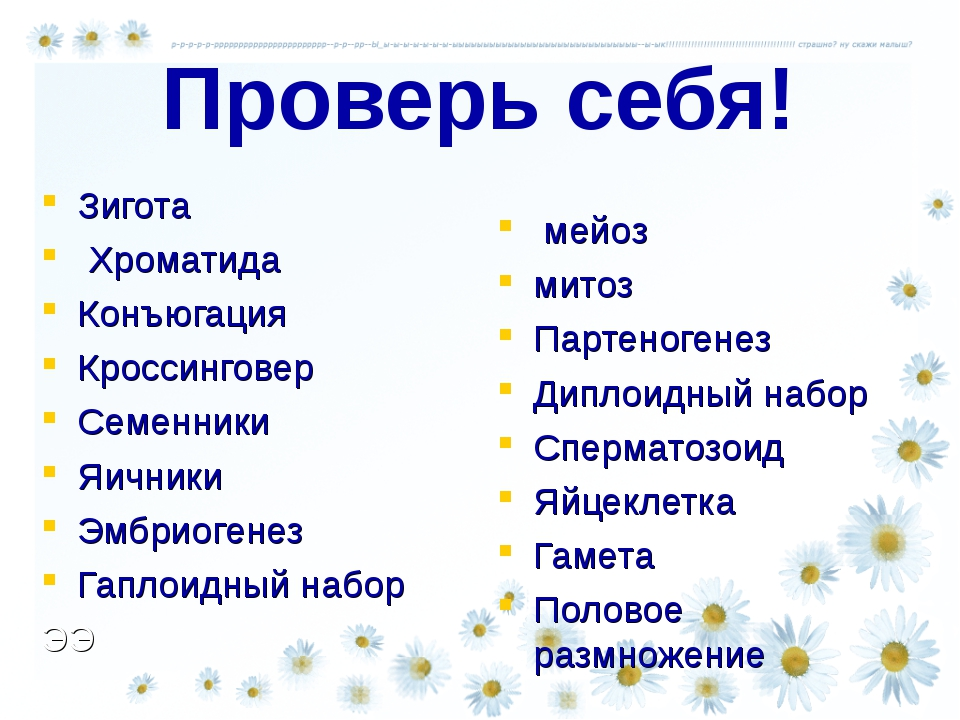 Проверь себя! Зигота Хроматида Конъюгация Кроссинговер Семенники Яичники Эмбр...
