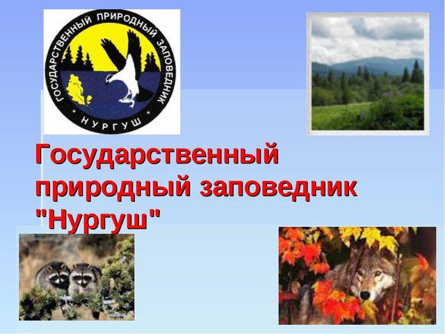 """Государственный природный заповедник """"Нургуш"""""""