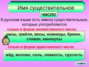Имя существительное ЧИСЛО В русском языке есть имена существительные, которые