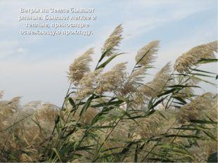 Ветры на Земле бывают разные. Бывают легкие и теплые, приносящие освежающую п