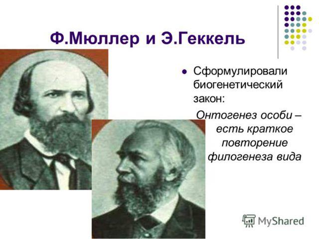 И.И.Мечников