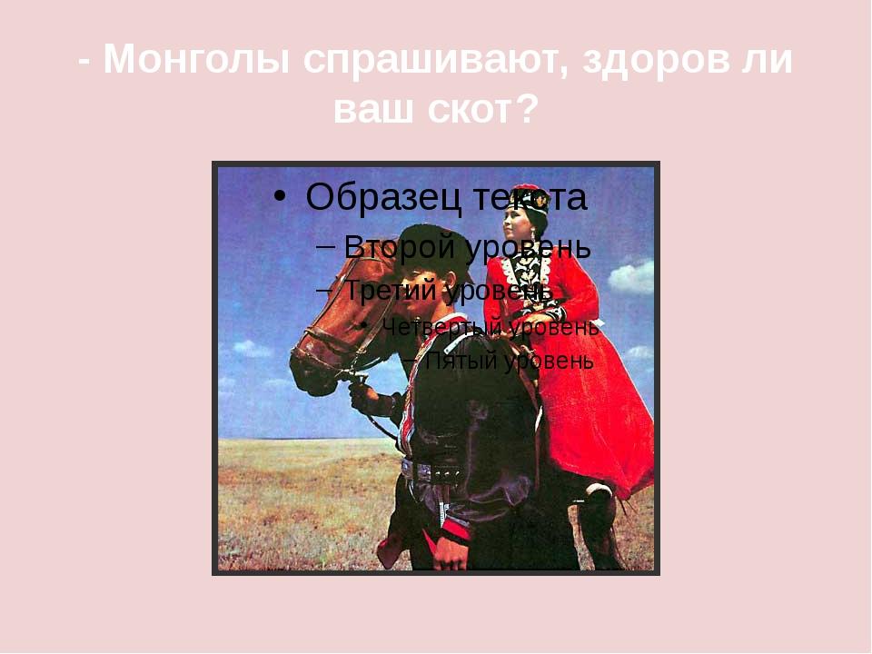 - Монголы спрашивают, здоров ли ваш скот?