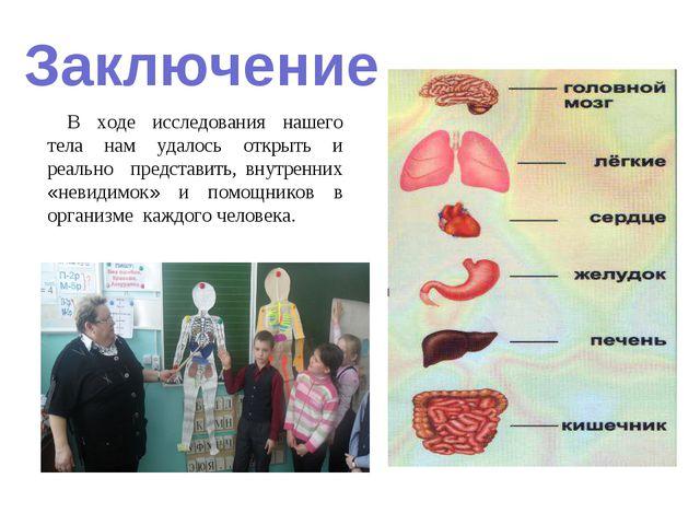 Заключение В ходе исследования нашего тела нам удалось открыть и реально пред...