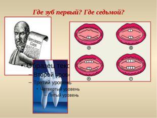 Где зуб первый? Где седьмой?
