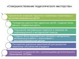 «Совершенствование педагогического мастерства»