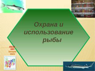 Охрана и использование рыбы
