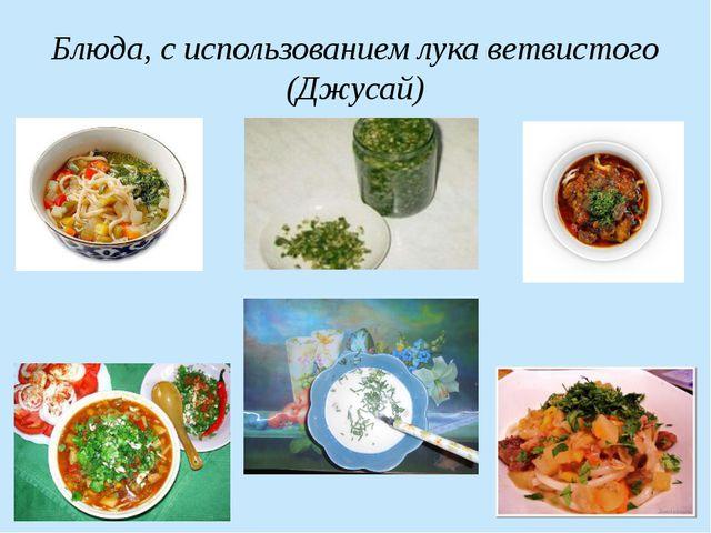 Блюда, с использованием лука ветвистого (Джусай)