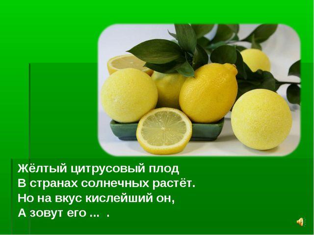 Жёлтый цитрусовый плод В странах солнечных растёт. Но на вкус кислейший он, А...