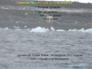 Символом Арктического региона является: Архипелаг Новая Земля. Экспедиция 20