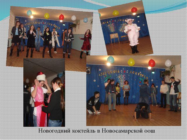 Новогодний коктейль в Новосамарской оош
