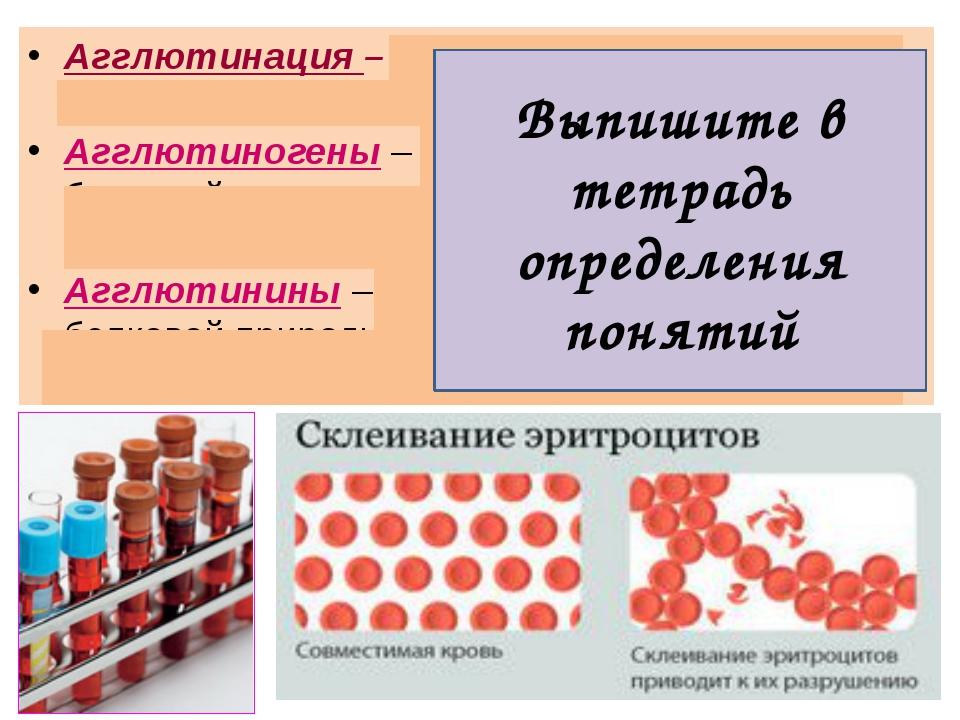 Агглютинация – это процесс склеивания эритроцитов. Агглютиногены – склеиваемы...