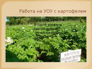 Работа на УОУ с картофелем
