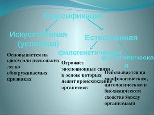 Классификация Основывается на одном или нескольких легко обнаруживаемых призн