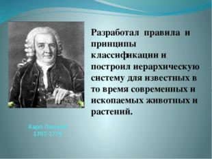 Карл Линней 1707-1778 Разработал правила и принципы классификации и построил