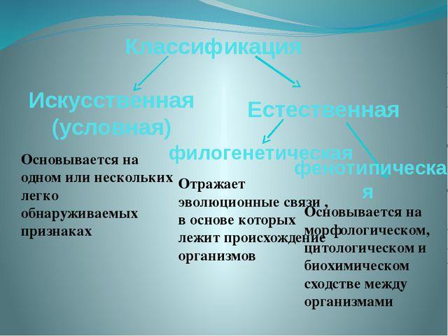 Классификация Основывается на одном или нескольких легко обнаруживаемых призн...