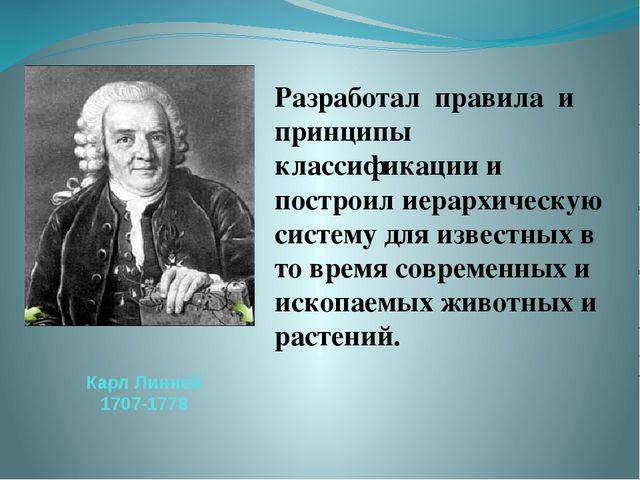 Карл Линней 1707-1778 Разработал правила и принципы классификации и построил...