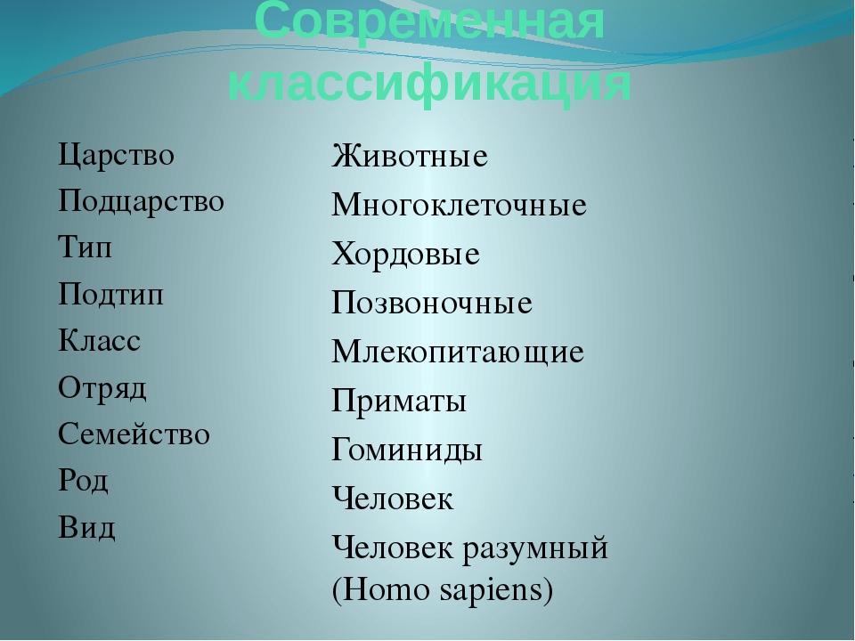 Современная классификация Царство Подцарство Тип Подтип Класс Отряд Семейство...