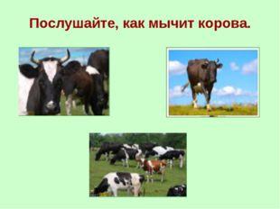 Послушайте, как мычит корова.