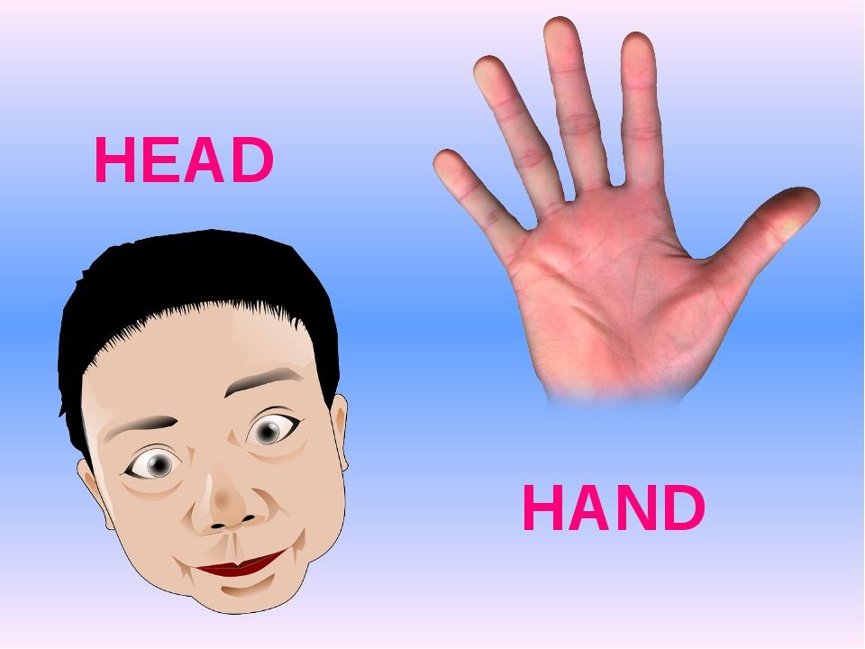 HEAD HAND