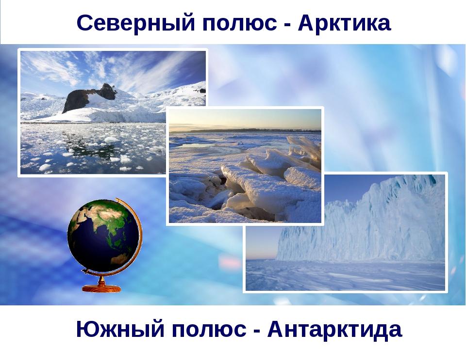Южный полюс - Антарктида Северный полюс - Арктика