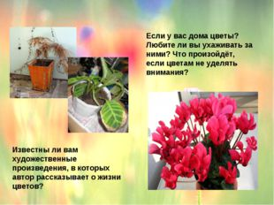Если у вас дома цветы? Любите ли вы ухаживать за ними? Что произойдёт, если ц