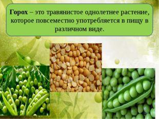 Горох–этотравянистое однолетнее растение, котороеповсеместно употребляетс