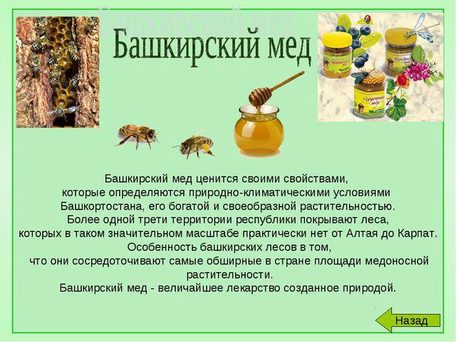 Башкирский мед ценится своими свойствами, которые определяются природно-клим...