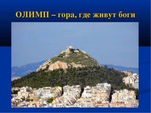 ОЛИМП – гора, где живут боги