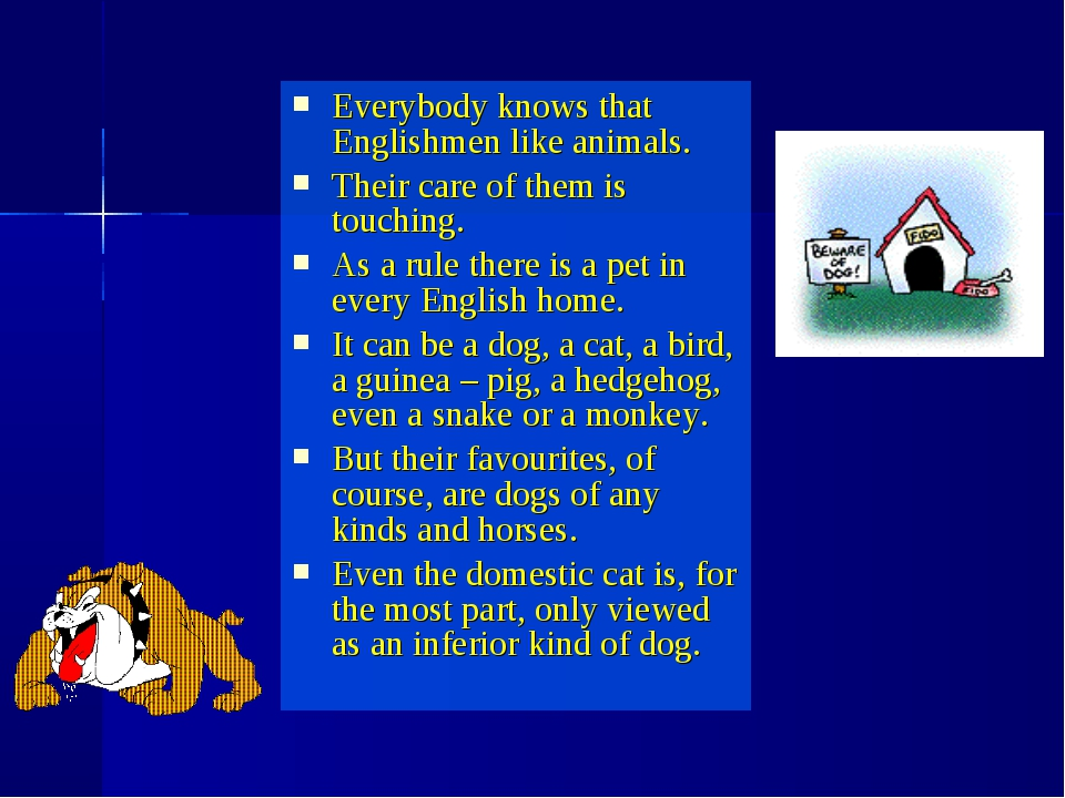 Everybody knows that Englishmen like animals. Their care of them is touching....