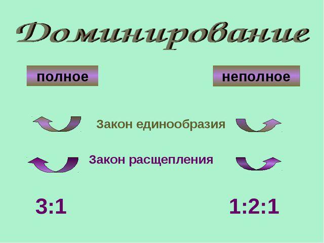 полное неполное Закон единообразия Закон расщепления 3:1 1:2:1