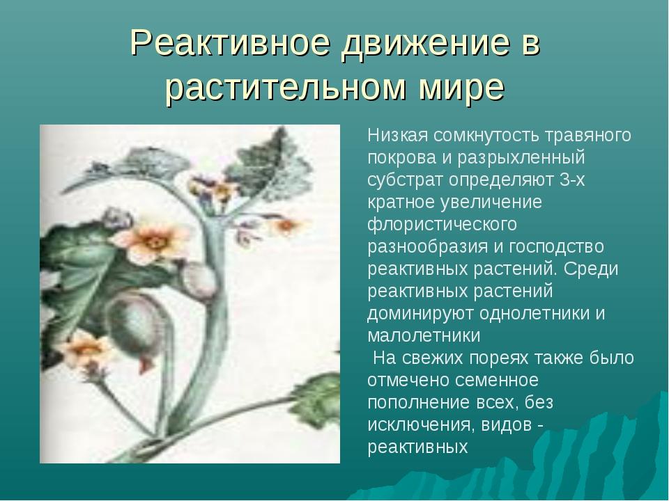 Реактивное движение в растительном мире Низкая сомкнутость травяного покрова...