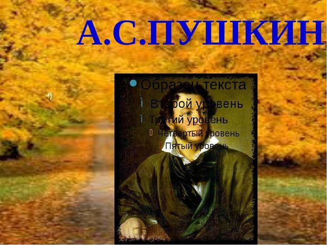 А.С.ПУШКИН ррррр