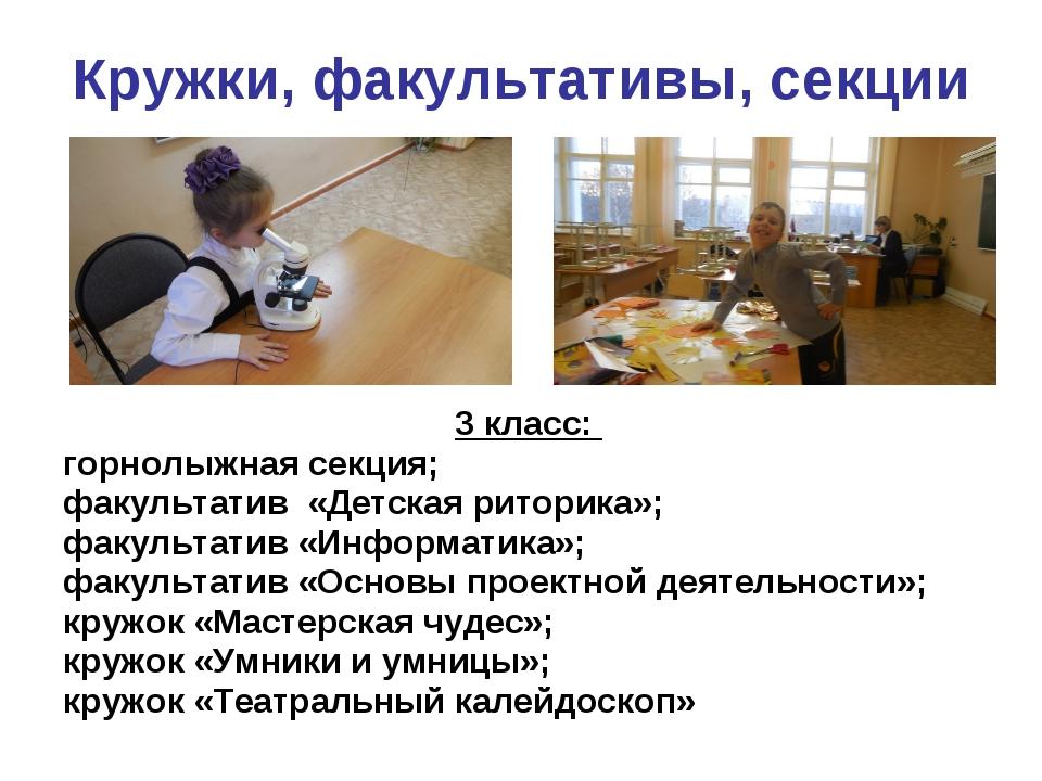 Кружки, факультативы, секции 3 класс: горнолыжная секция; факультатив «Детска...