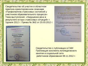 Свидетельство об участии в областном практико-ориентировочном семинаре «Профи