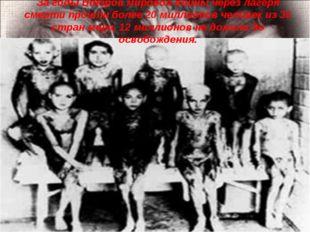 За годы Второй мировой войны через лагеря смерти прошли более 20 миллионов че