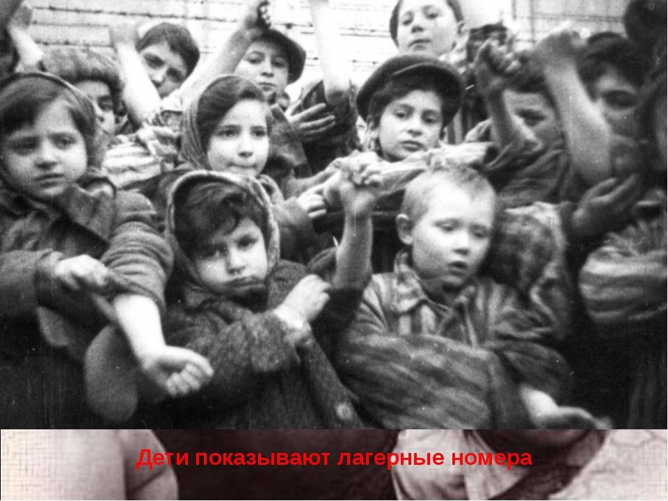 Дети показывают лагерные номера