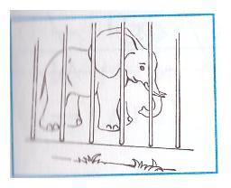 C:\Documents and Settings\УЧИТЕЛЬ\Мои документы\Мои рисунки\Изображение\Изображение 019.jpg