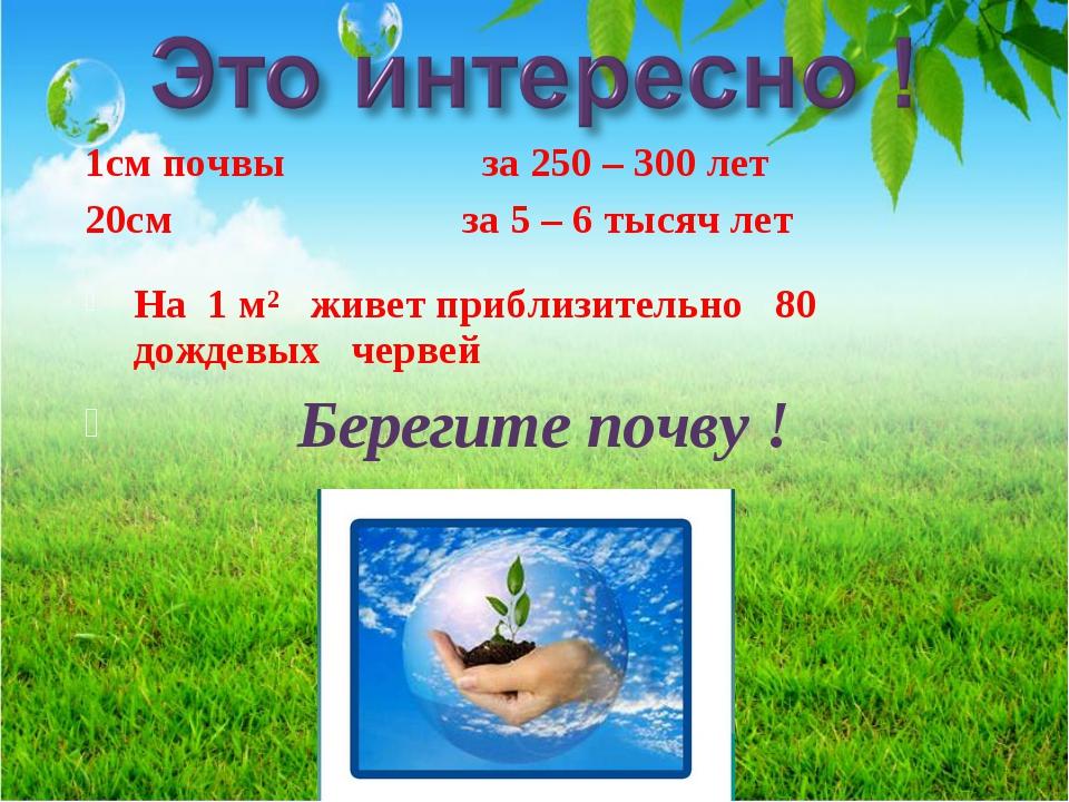 1см почвы за 250 – 300 лет 20см за 5 – 6 тысяч лет На 1 м² живет приблизитель...