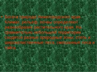 Богата природа Нижегородского края. Климат, рельеф, почвы определяют разнообр