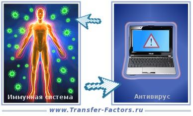 C:\Users\home\Desktop\Ашық сабақ\immunitet-antivirus.jpg