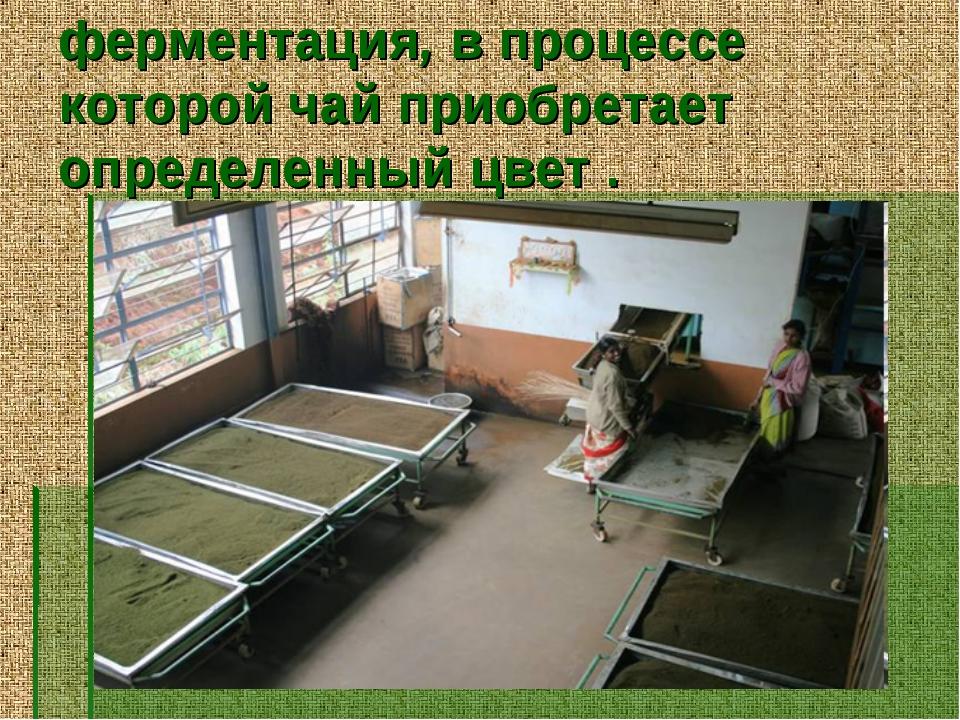 ферментация, в процессе которой чай приобретает определенный цвет .